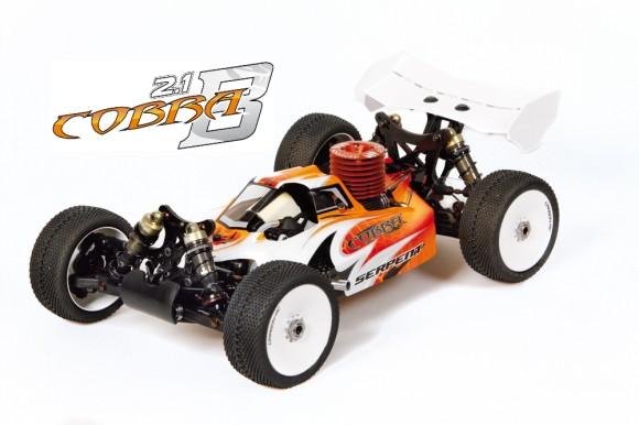 Cobra buggy 2.1-main_23